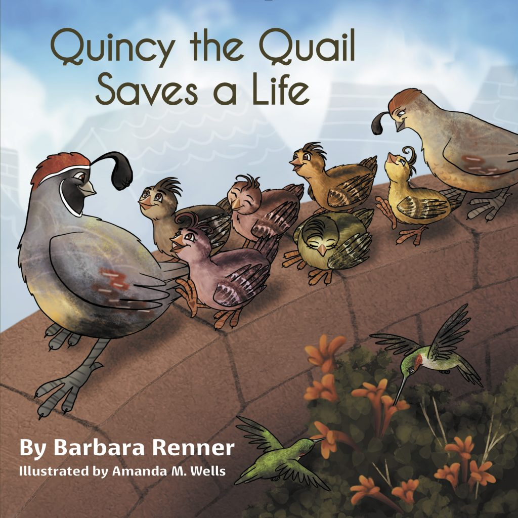Hummingbirds found in Quincy the Quail Saves a Life