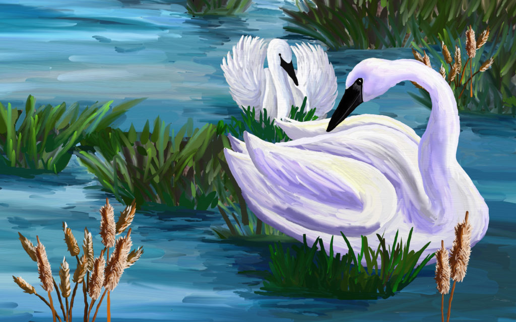 Spring! Time to Build a Nest, A Story about Trumpeter Swans