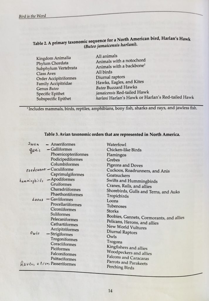 Avian Taxonomy