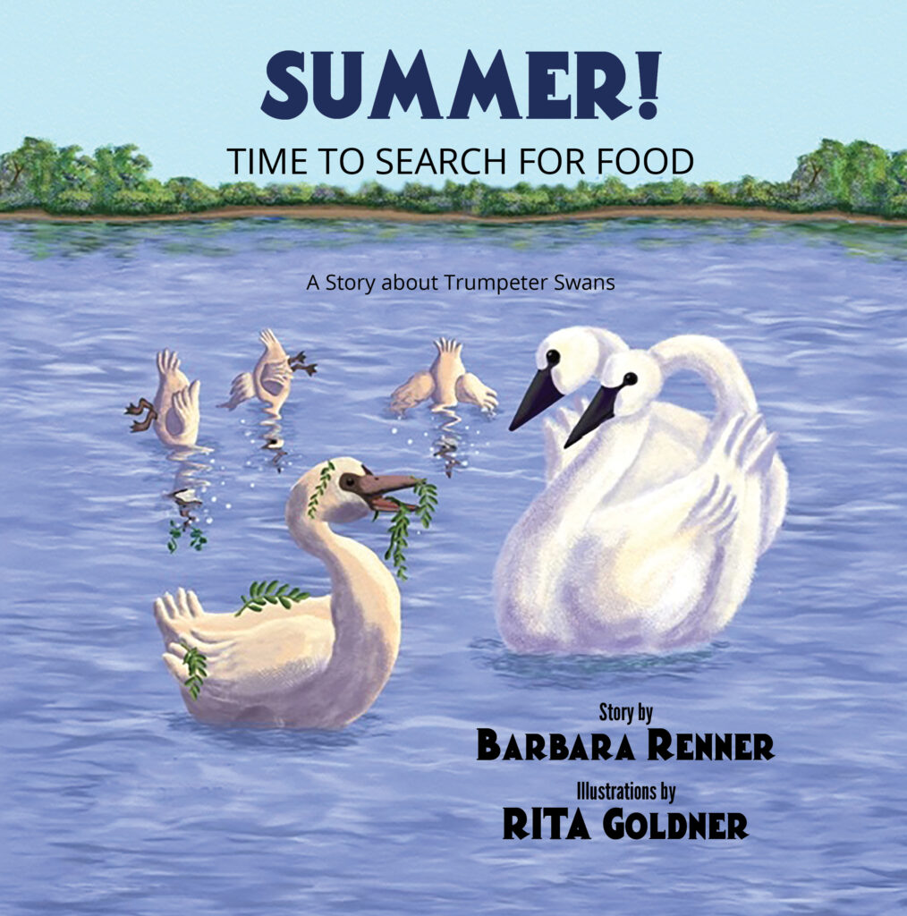 Summer! Time to Search for Food, A Story about Trumpeter Swans, Children's Picture Books