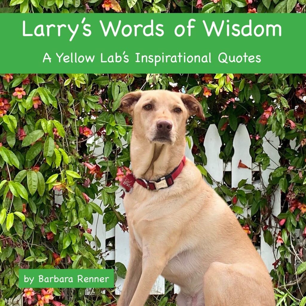 Larry's Words of Wisdom book in softcover and hardcover.